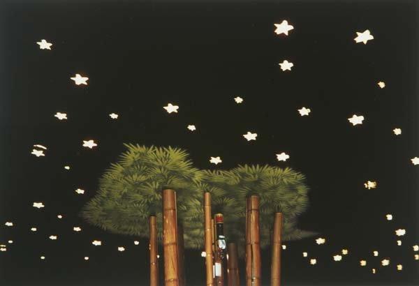 232: Twenty Various Artists New California Views, 1979;