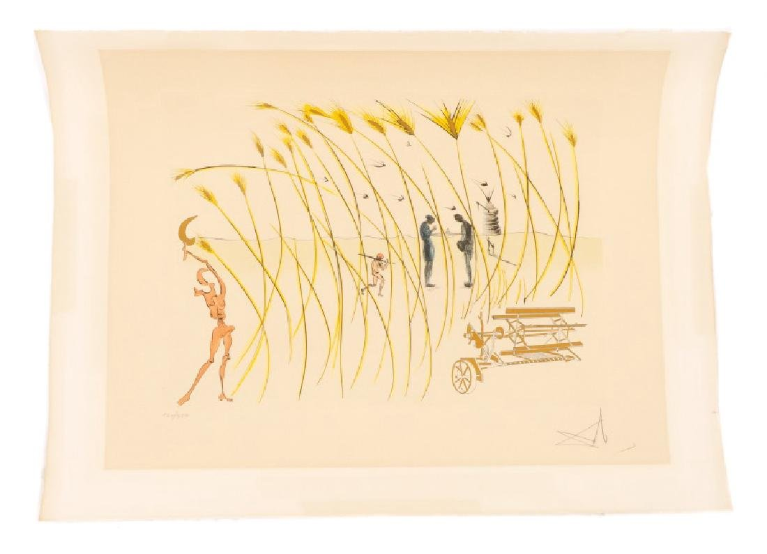 """Dali. """"La moissonneuse"""", Hommage a da Vinci"""