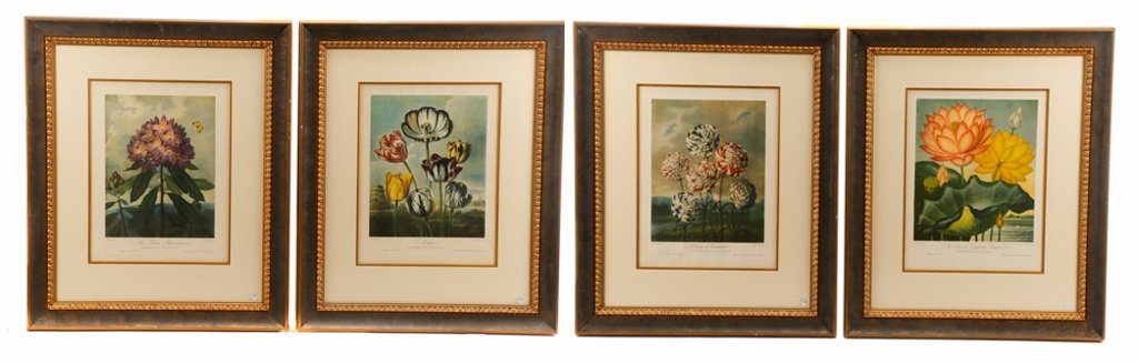 Set, 4 Plates from Thorton's The Temple of Flora
