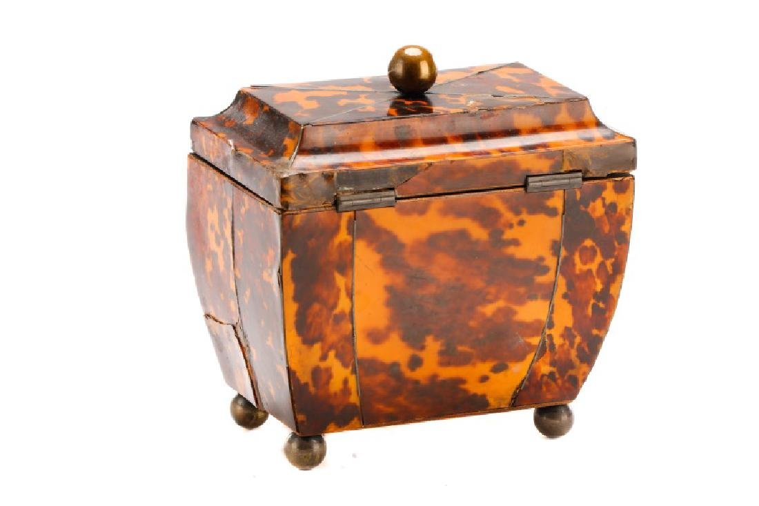 English Georgian Tea Caddy, 19th Century - 8