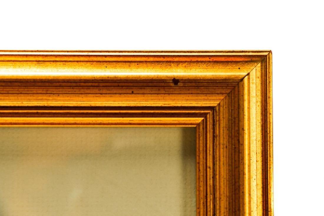 """John Gould, """"Trogan Personatus"""", Framed - 8"""