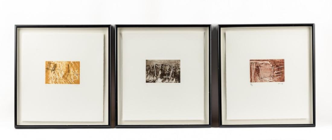 "Series of Michael Heizer ""Montana Survey"" Etchings"