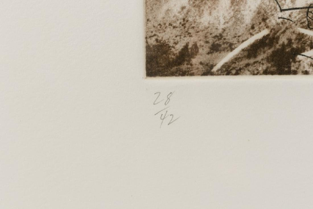 "Series of Michael Heizer ""Montana Survey"" Etchings - 8"