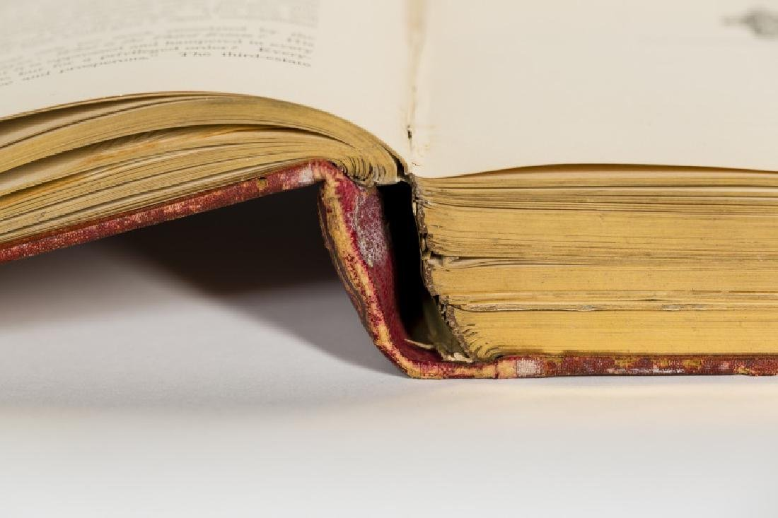 Leather Bound Book from the Library of Teddy Roosevelt - 9