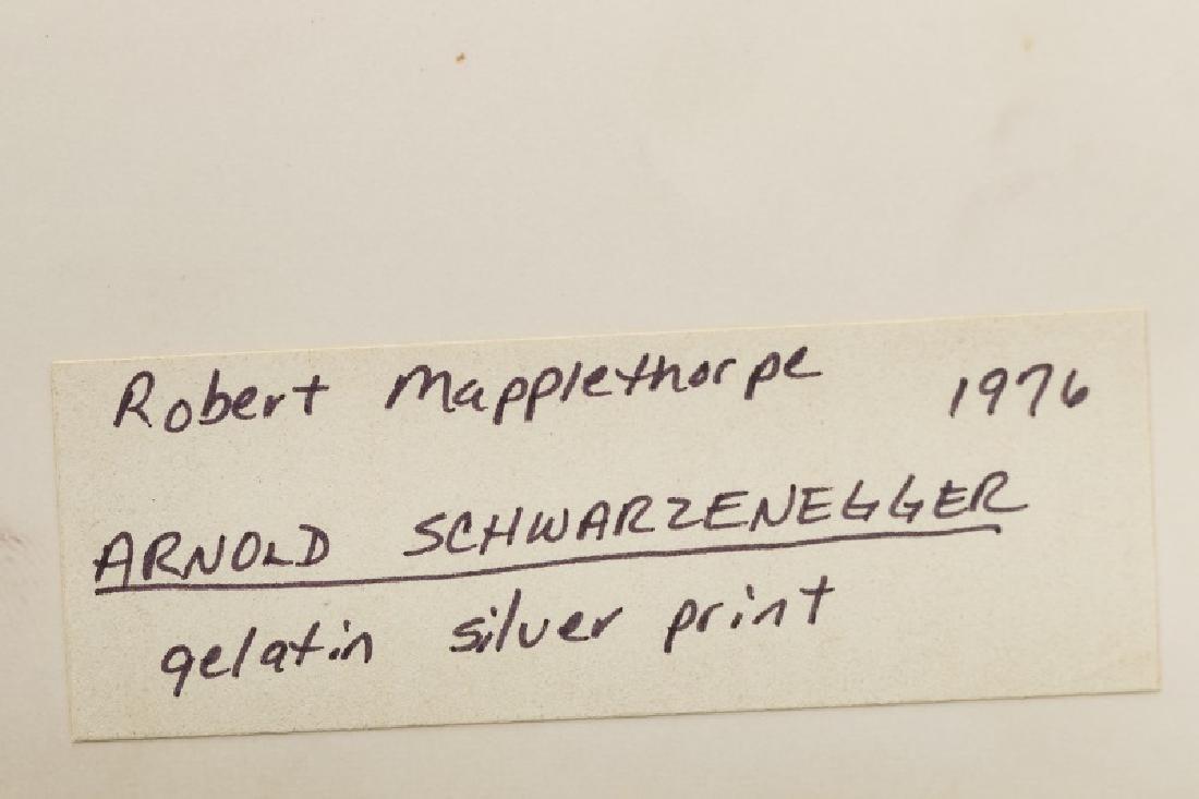 """Robert Mapplethorpe, """"Schwarzenegger"""" 1976 - 3"""
