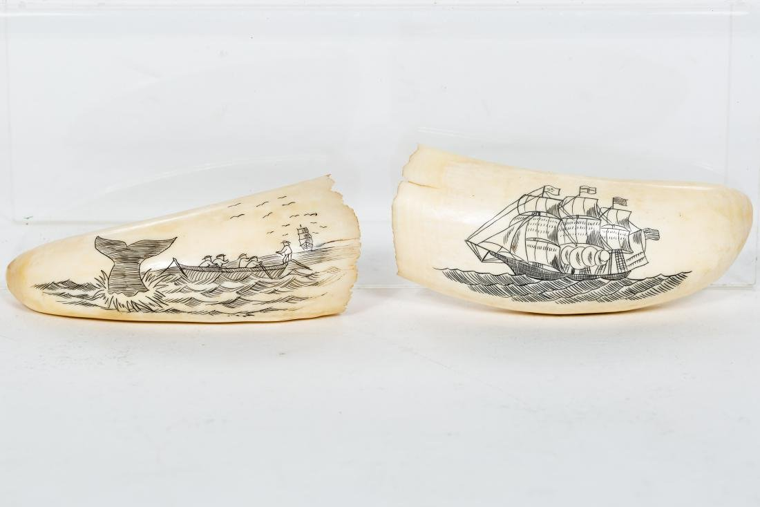 Two Carved Scrimshaws, Maritime Scenes