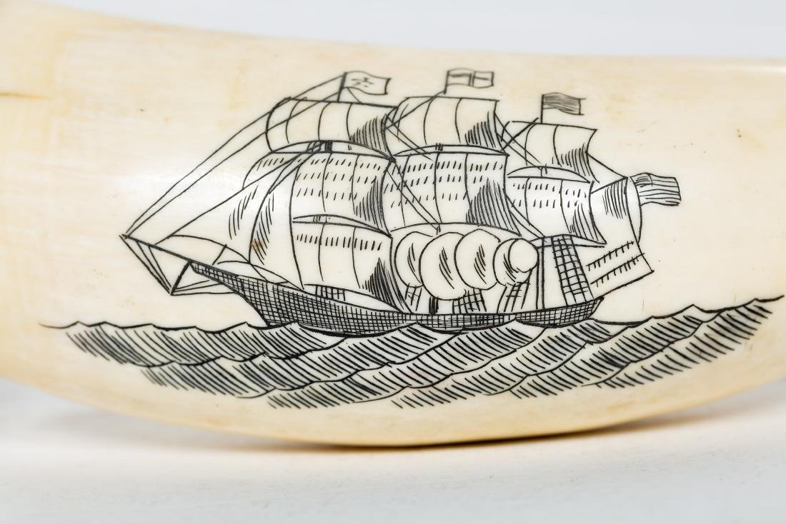 Two Carved Scrimshaws, Maritime Scenes - 3