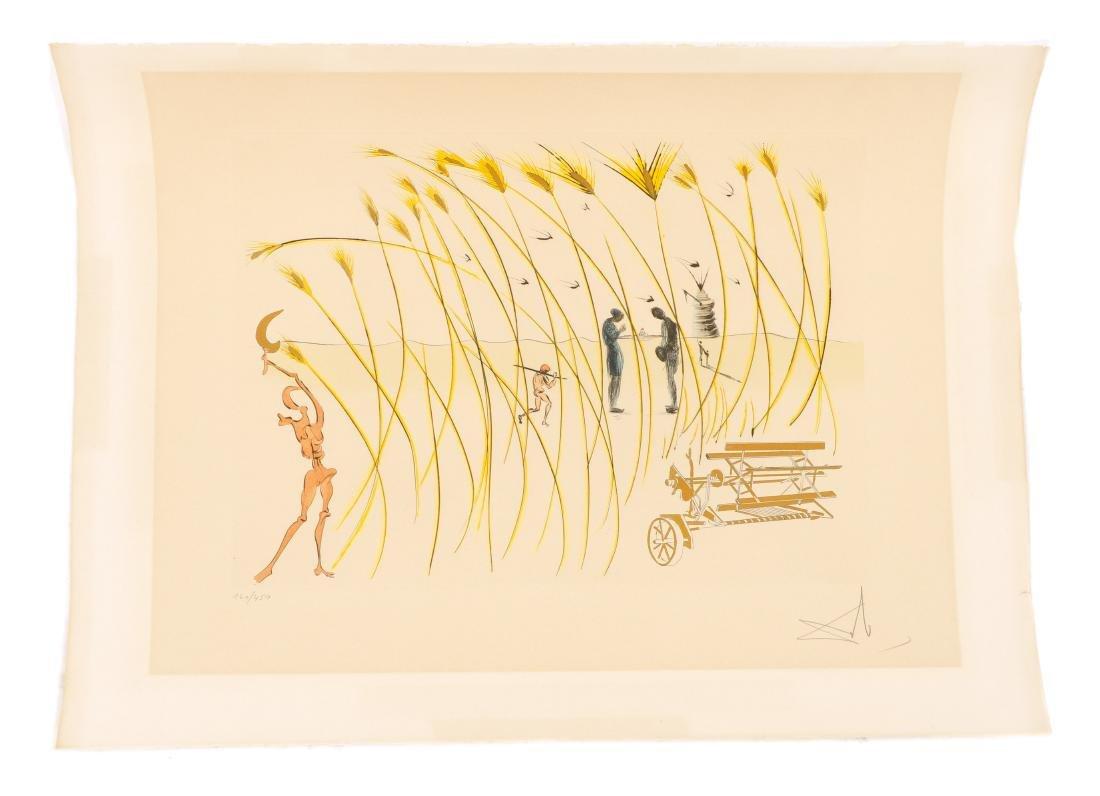 """Dali, """"La moissonneuse"""", Hommage a da Vinci"""