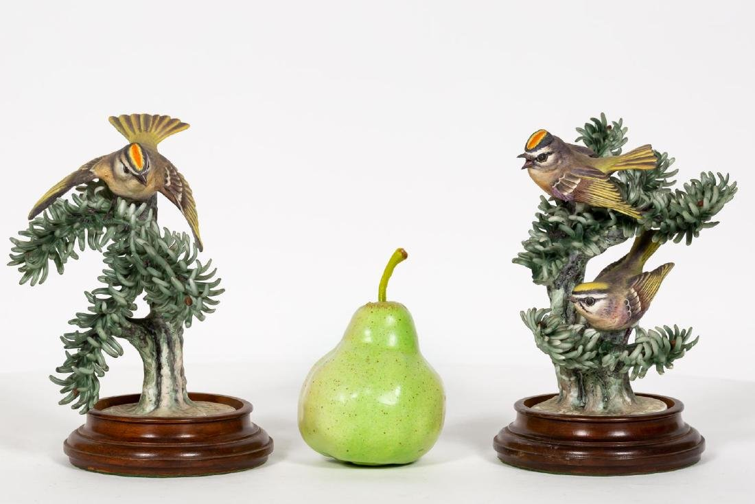 Pair, Doughty Golden Crown Kinglets on Stands
