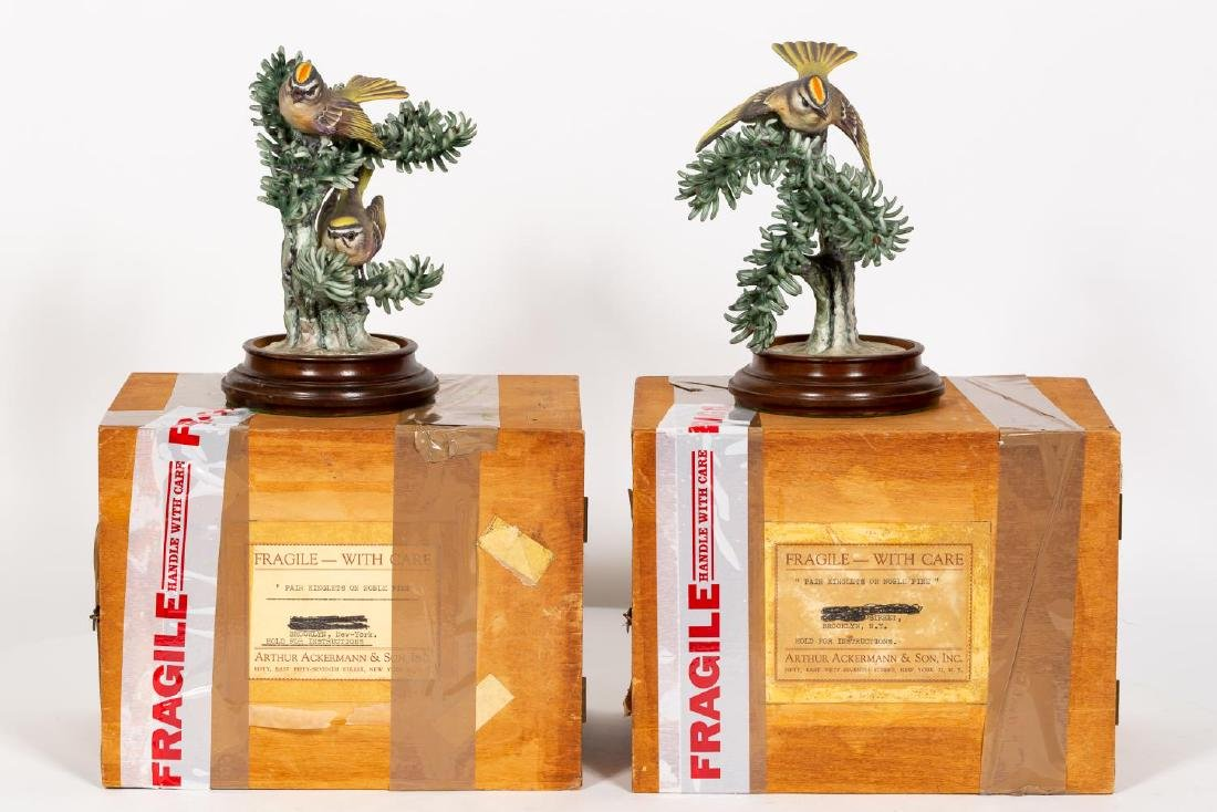 Pair, Doughty Golden Crown Kinglets on Stands - 7