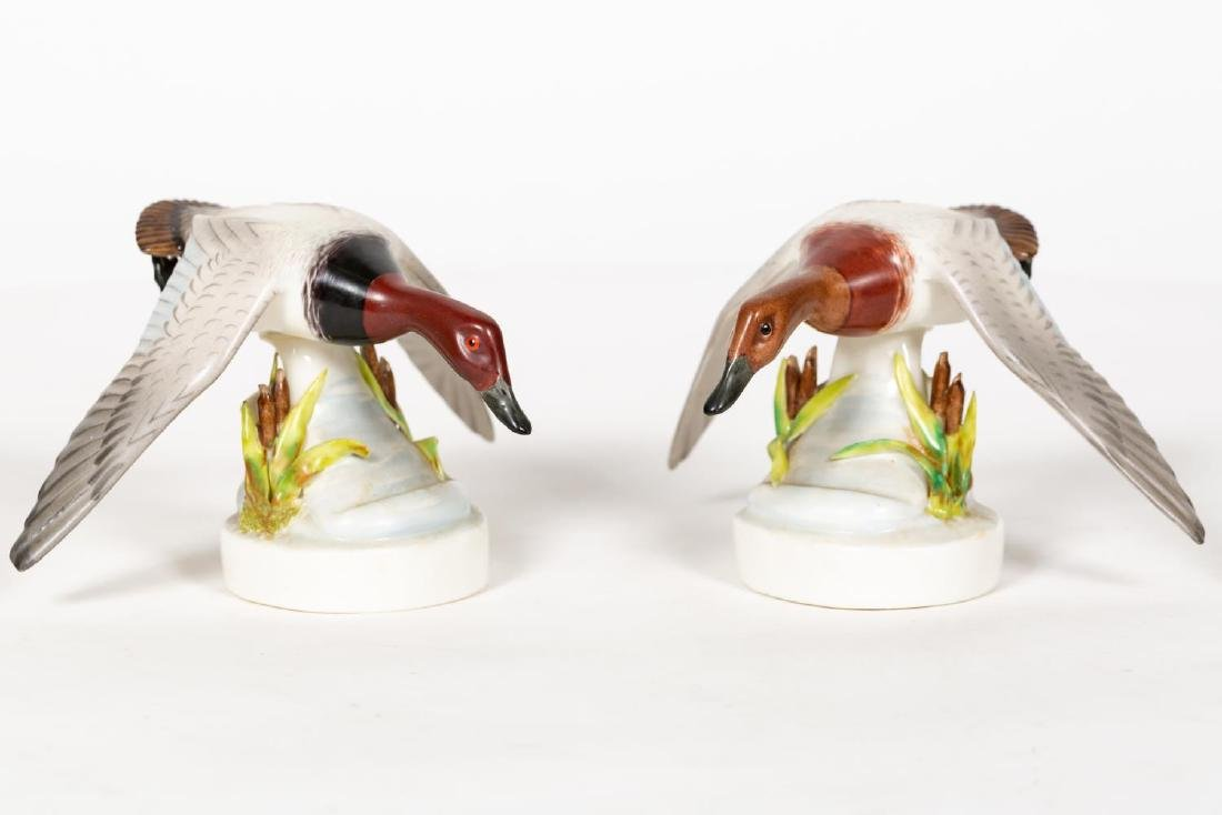 Two Boehm Porcelain Canvasback Ducks, Small - 2