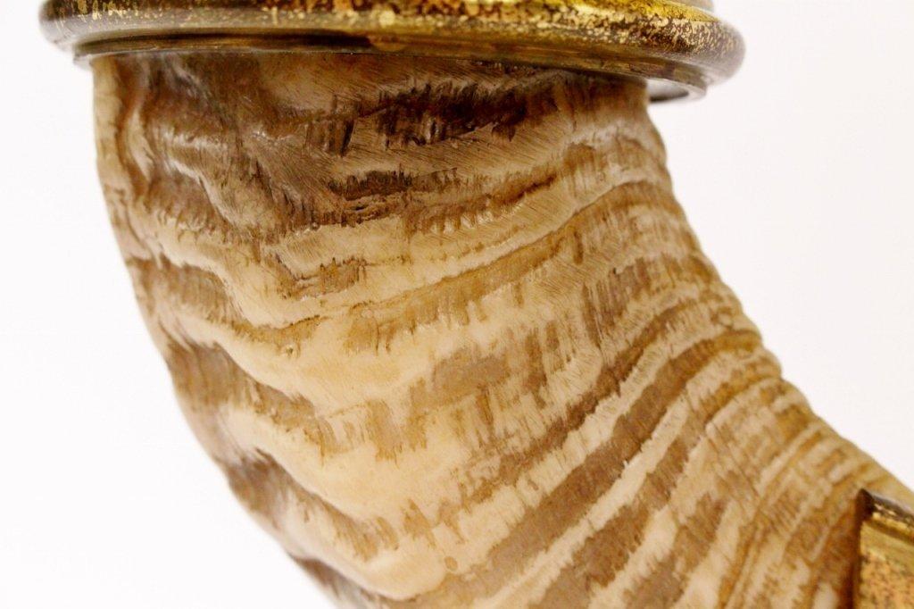 Chapman Ram's Horn & Brass Table Lamp - 4