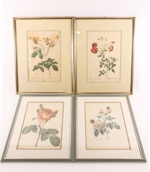 Collection of Four Redouté Framed Botanical Prints