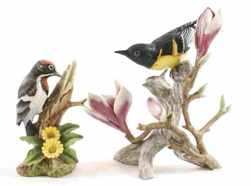 Pair of Porcelain Bird Figurines, Audubon & Andrea