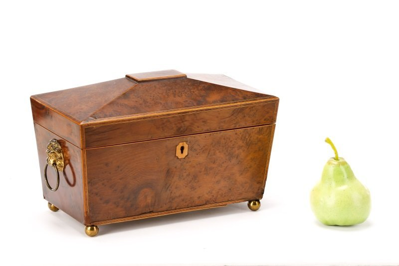 English Regency Burled Wood Tea Caddy - 10