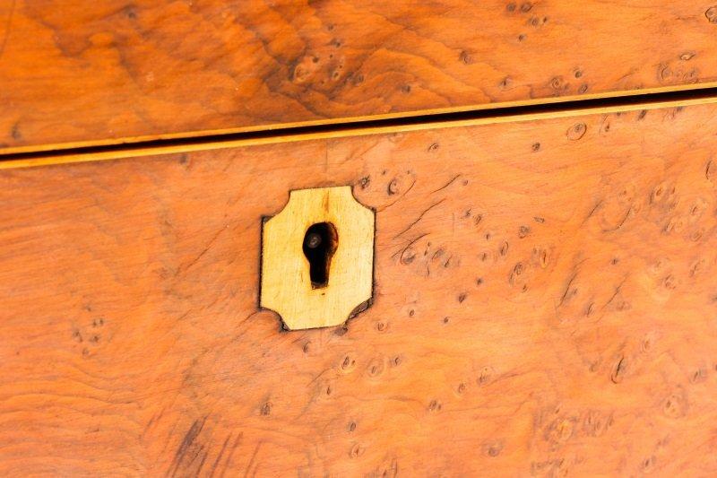 English Regency Burled Wood Tea Caddy - 3