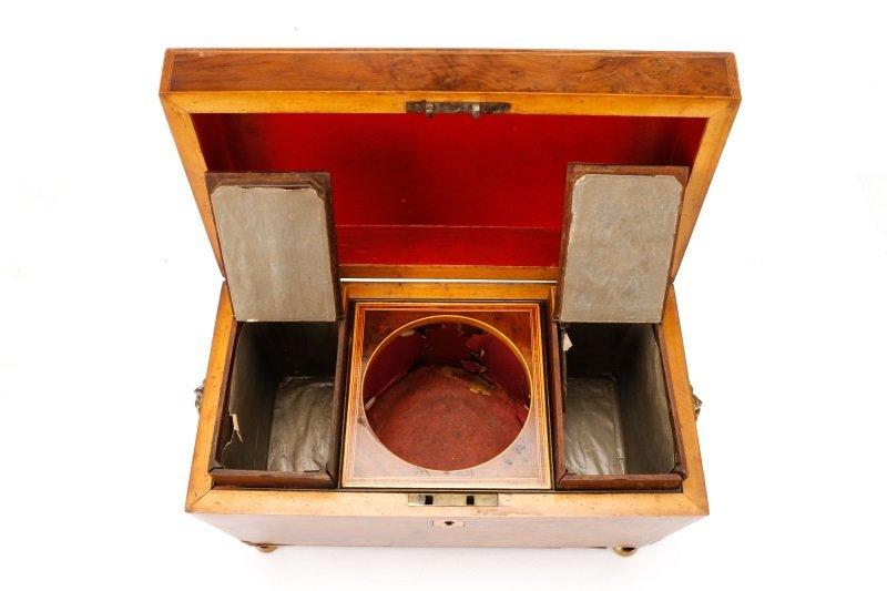 English Regency Burled Wood Tea Caddy - 7