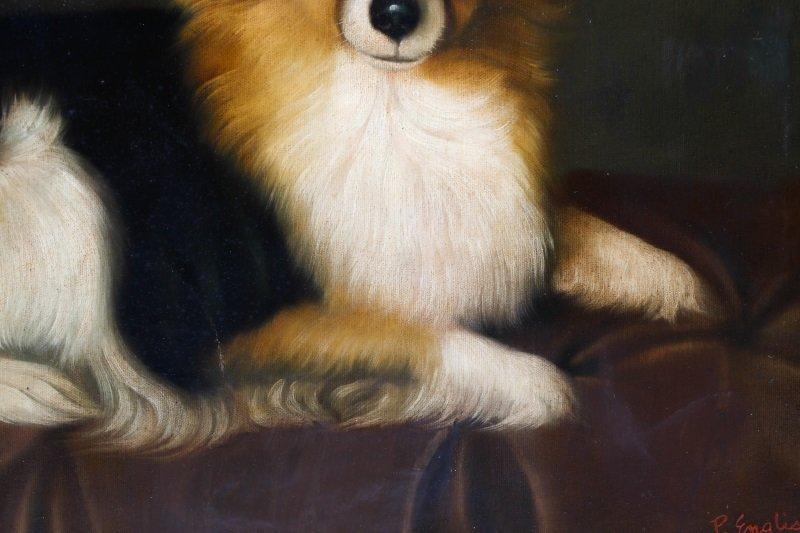 Style Of George Stubbs, Portrait Of Pomeranian - 4