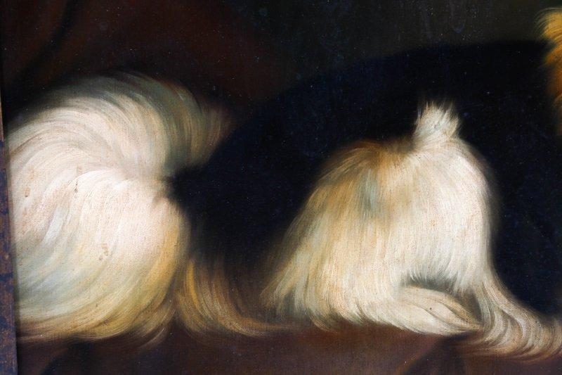 Style Of George Stubbs, Portrait Of Pomeranian - 5