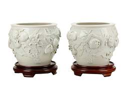 Pair Large Blanc de Chine Prunus Branch Planters