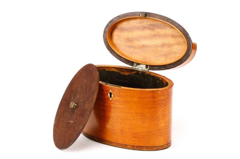 Oval George III Satinwood Shell Inlaid Tea Caddy - 3