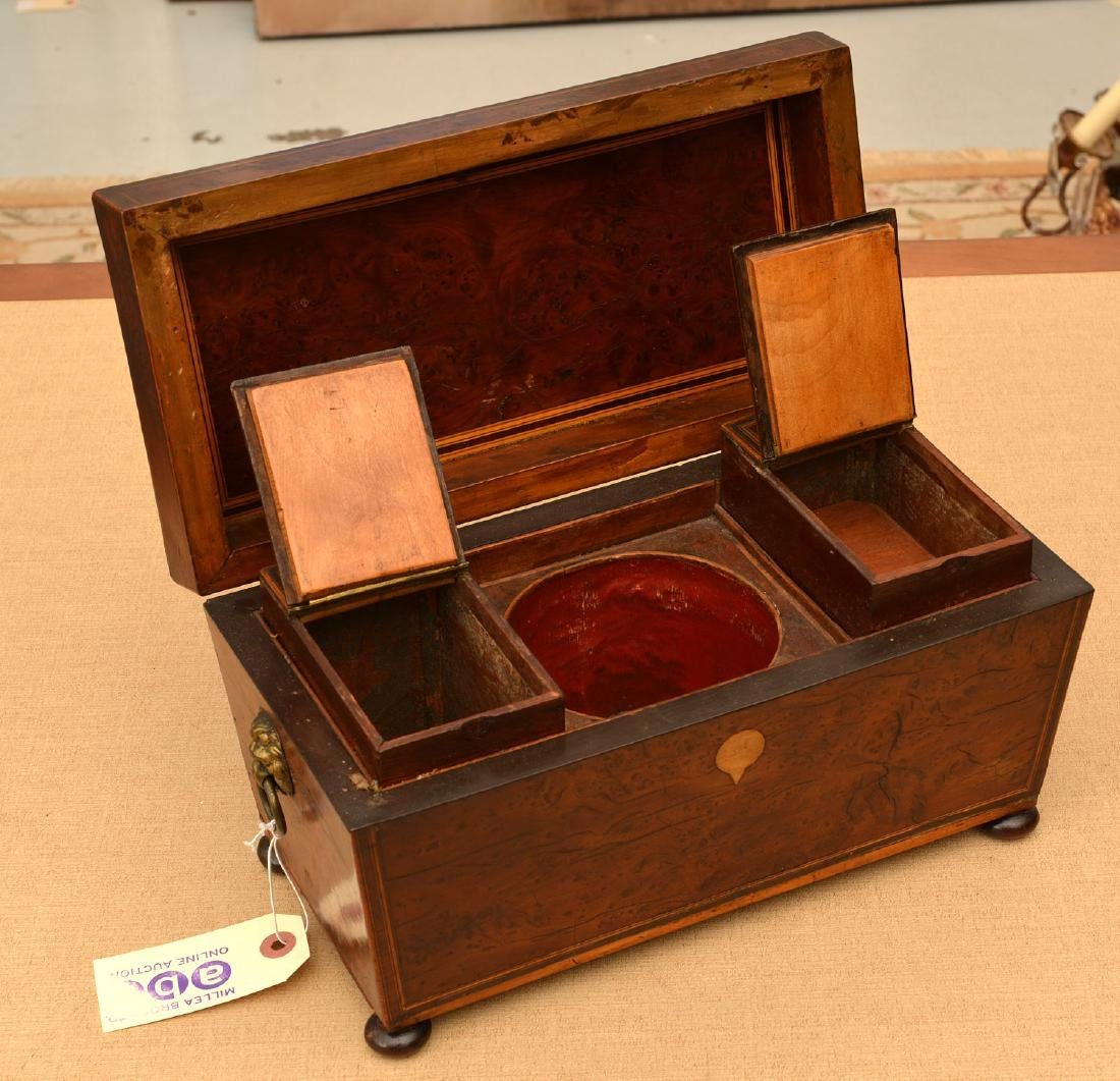 English Regency inlaid burlwood tea caddy - 2