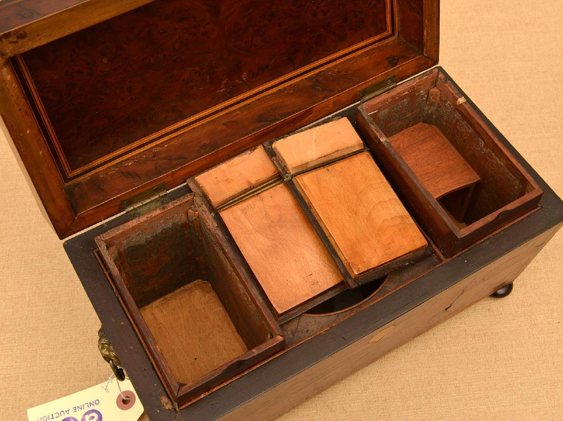 English Regency inlaid burlwood tea caddy - 4