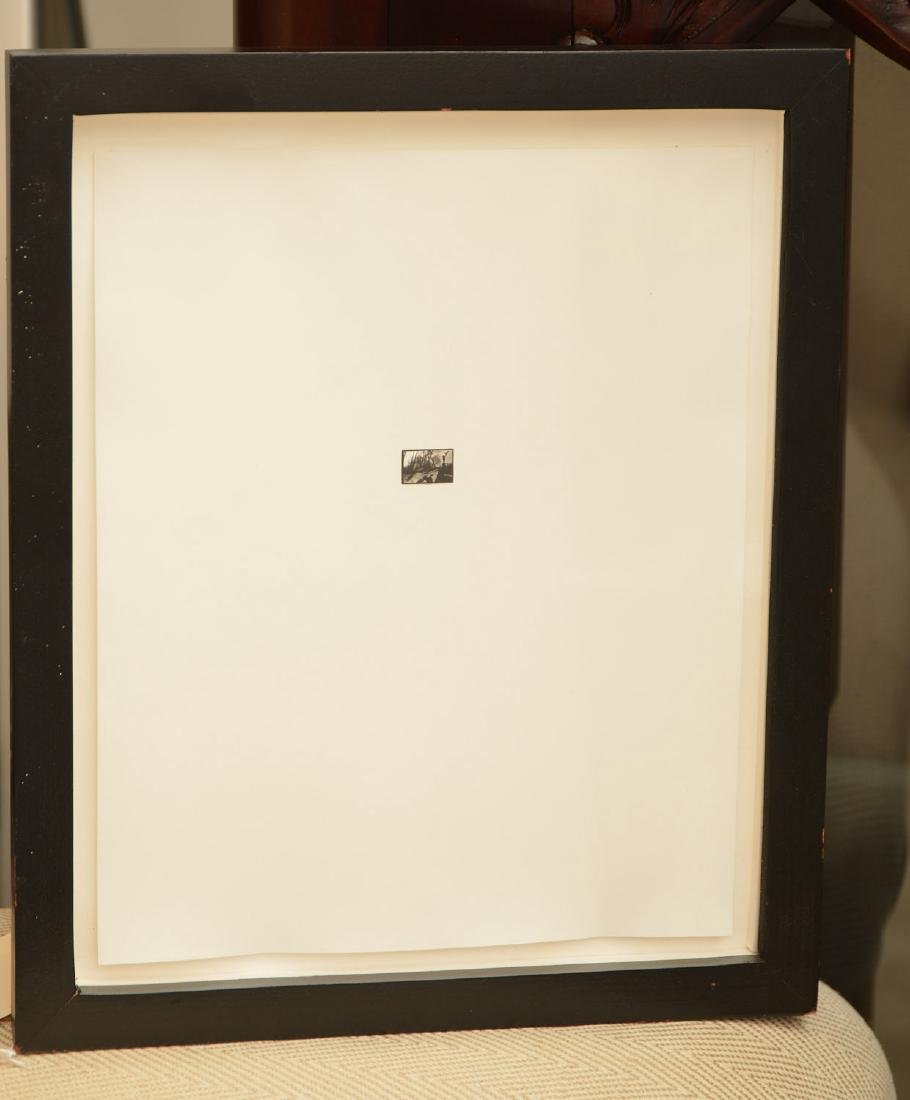Unidentified artist, world's tiniest photograph