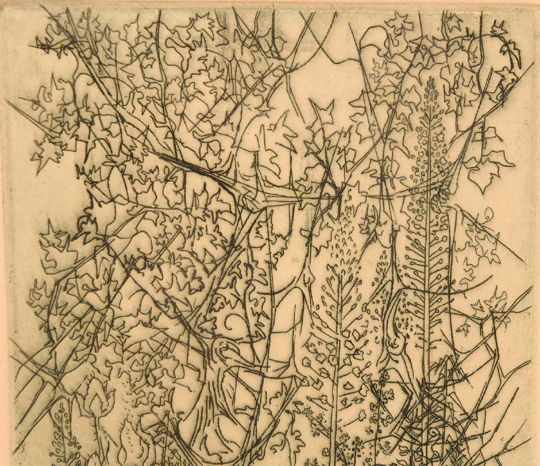 Gabor Peterdi, etching - 3