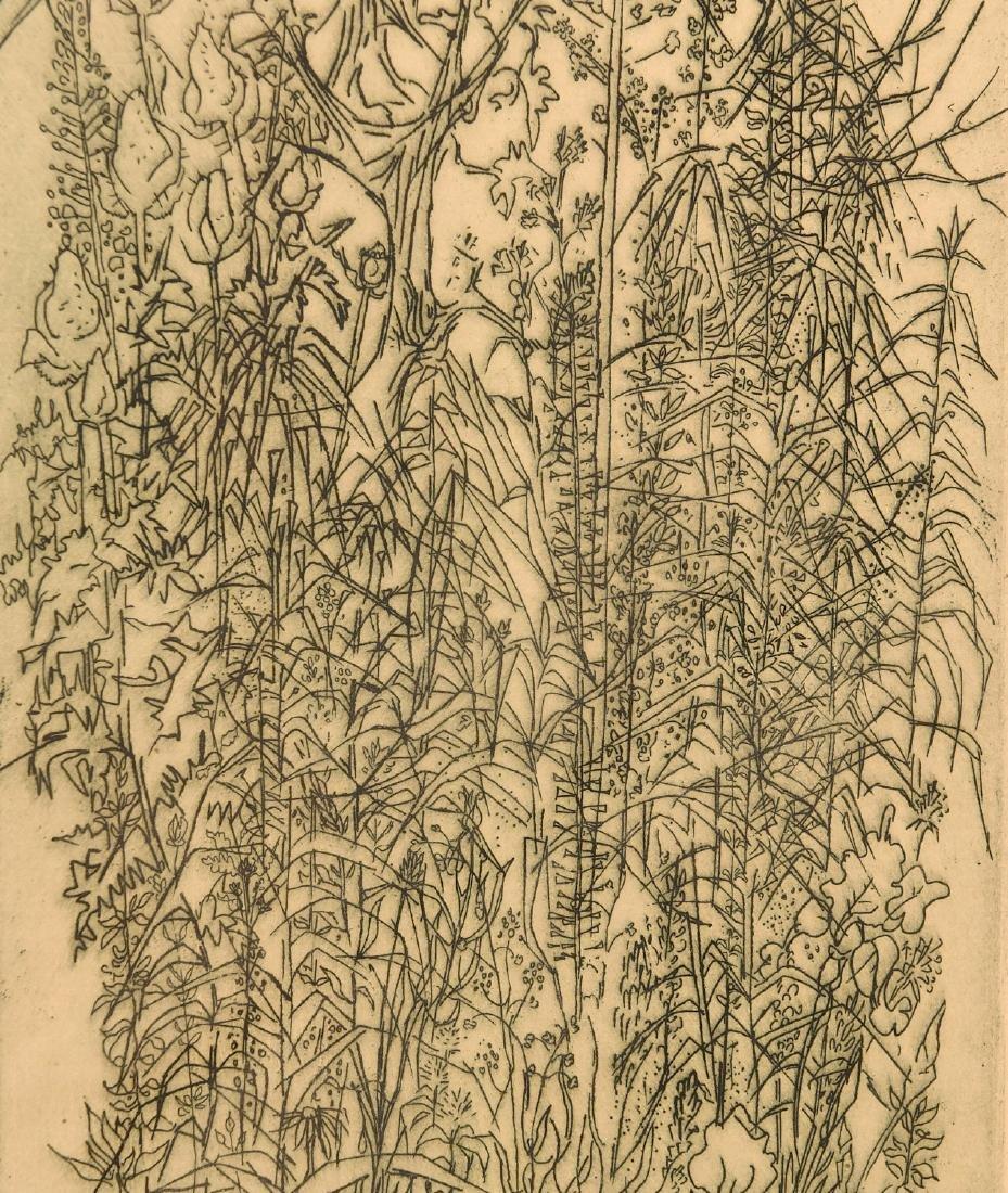 Gabor Peterdi, etching - 4