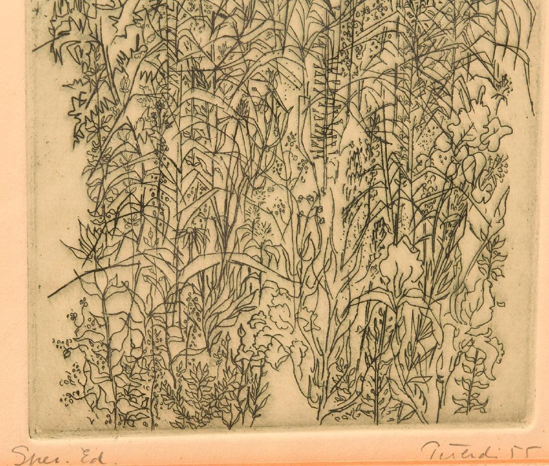 Gabor Peterdi, etching - 5