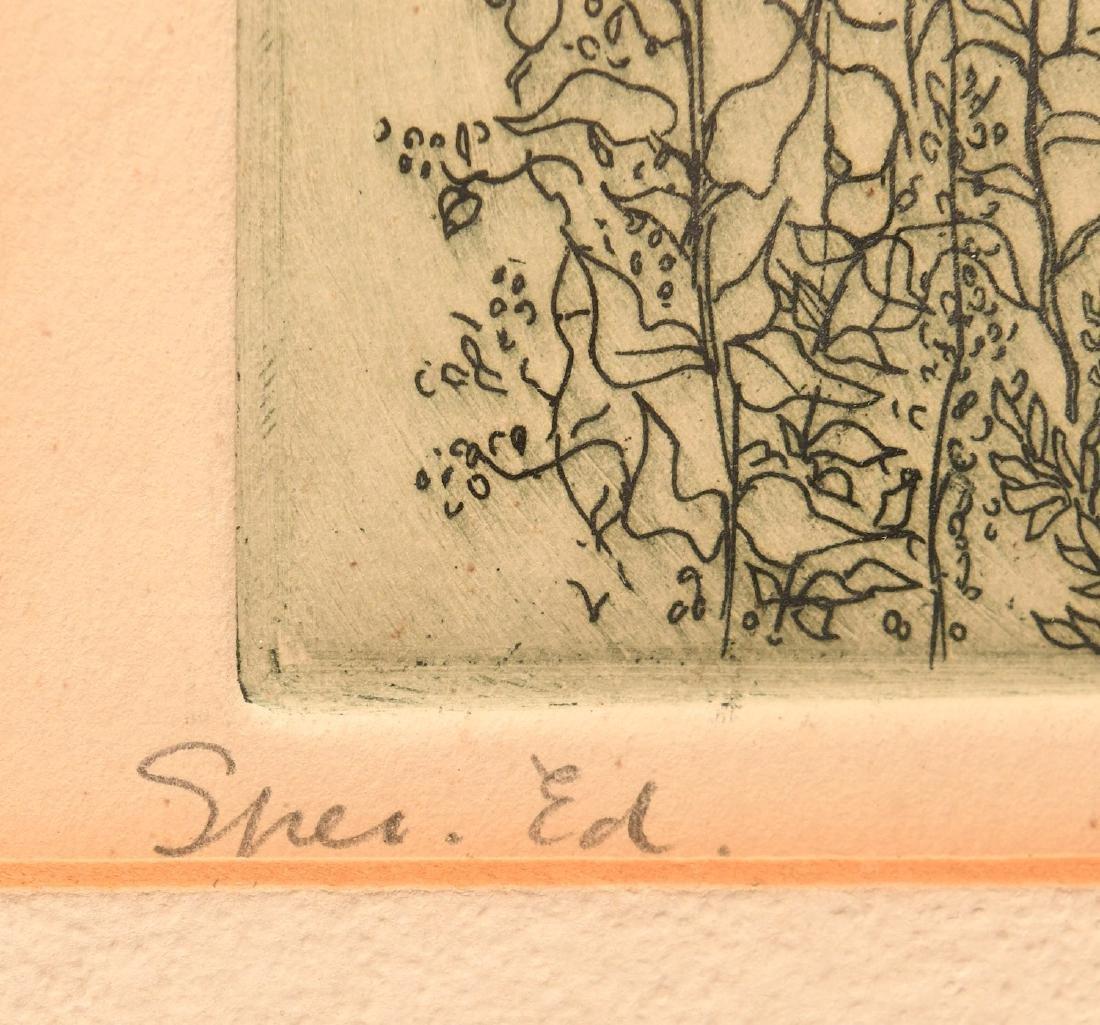 Gabor Peterdi, etching - 6