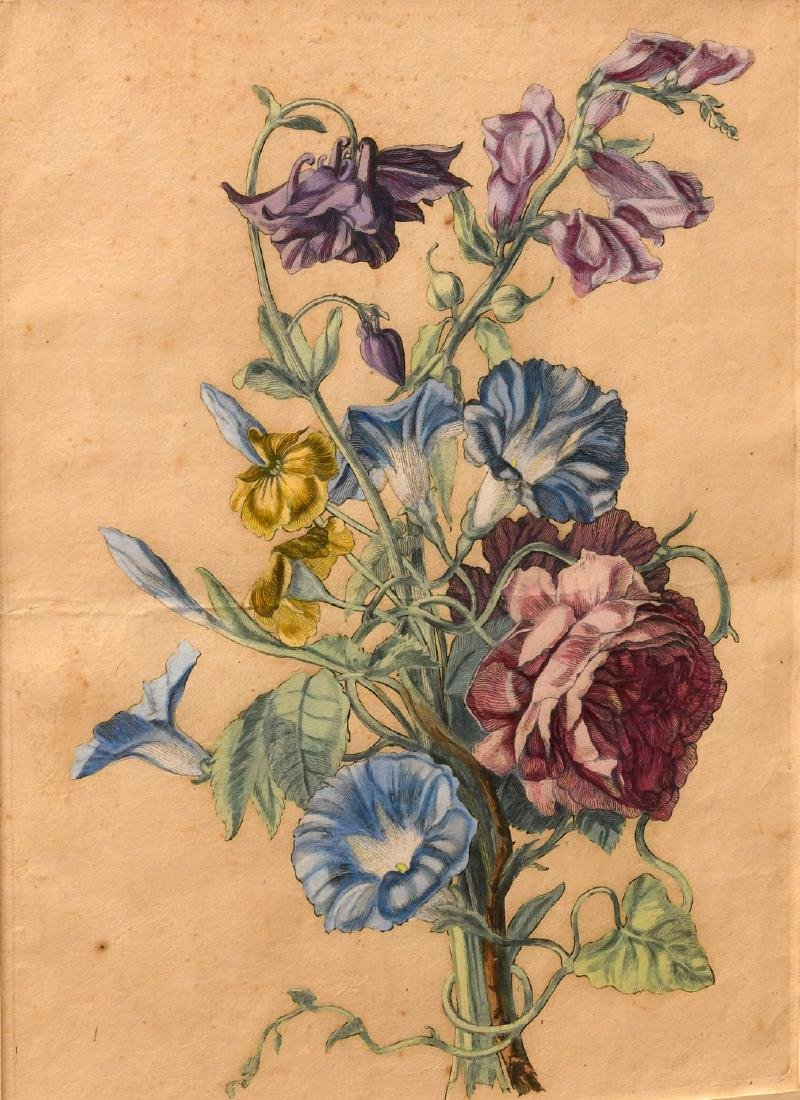 Group (3) hand-colored botanical etchings - 2