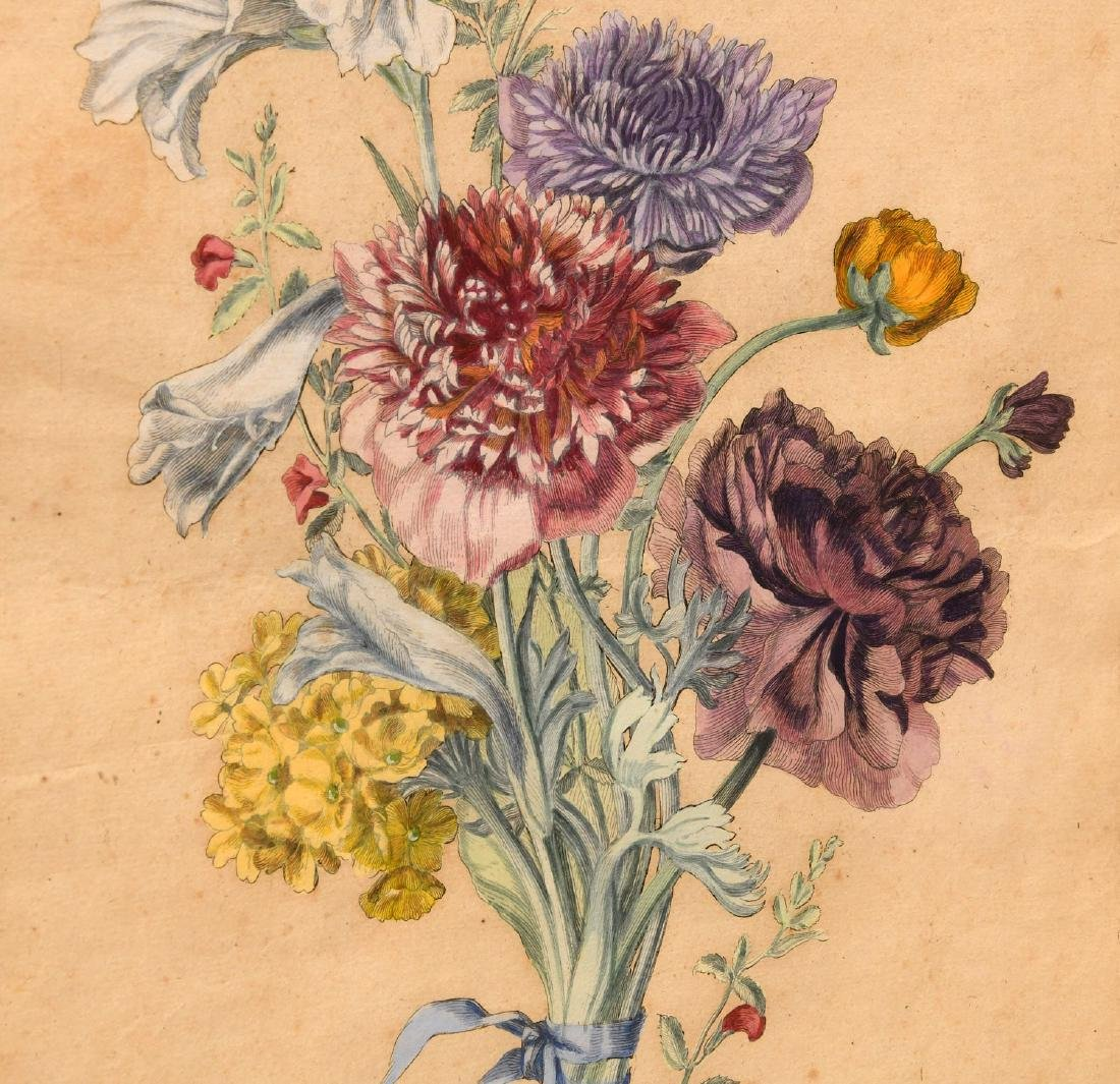 Group (3) hand-colored botanical etchings - 5