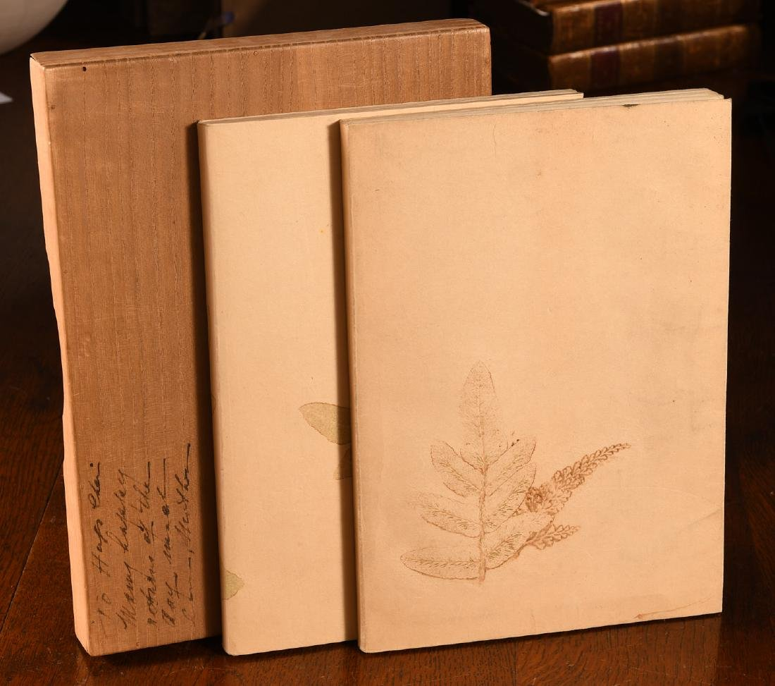 BOOKS: (2) Vols Antique Japanese Ikebana Paintings