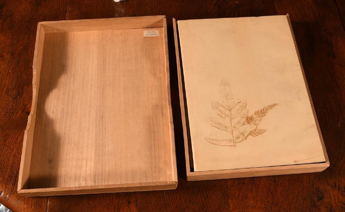 BOOKS: (2) Vols Antique Japanese Ikebana Paintings - 2