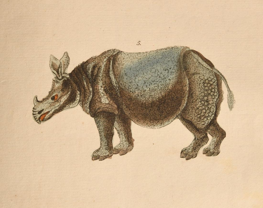 BOOKS: Martyn 1785 Dictionary of Natural History - 8