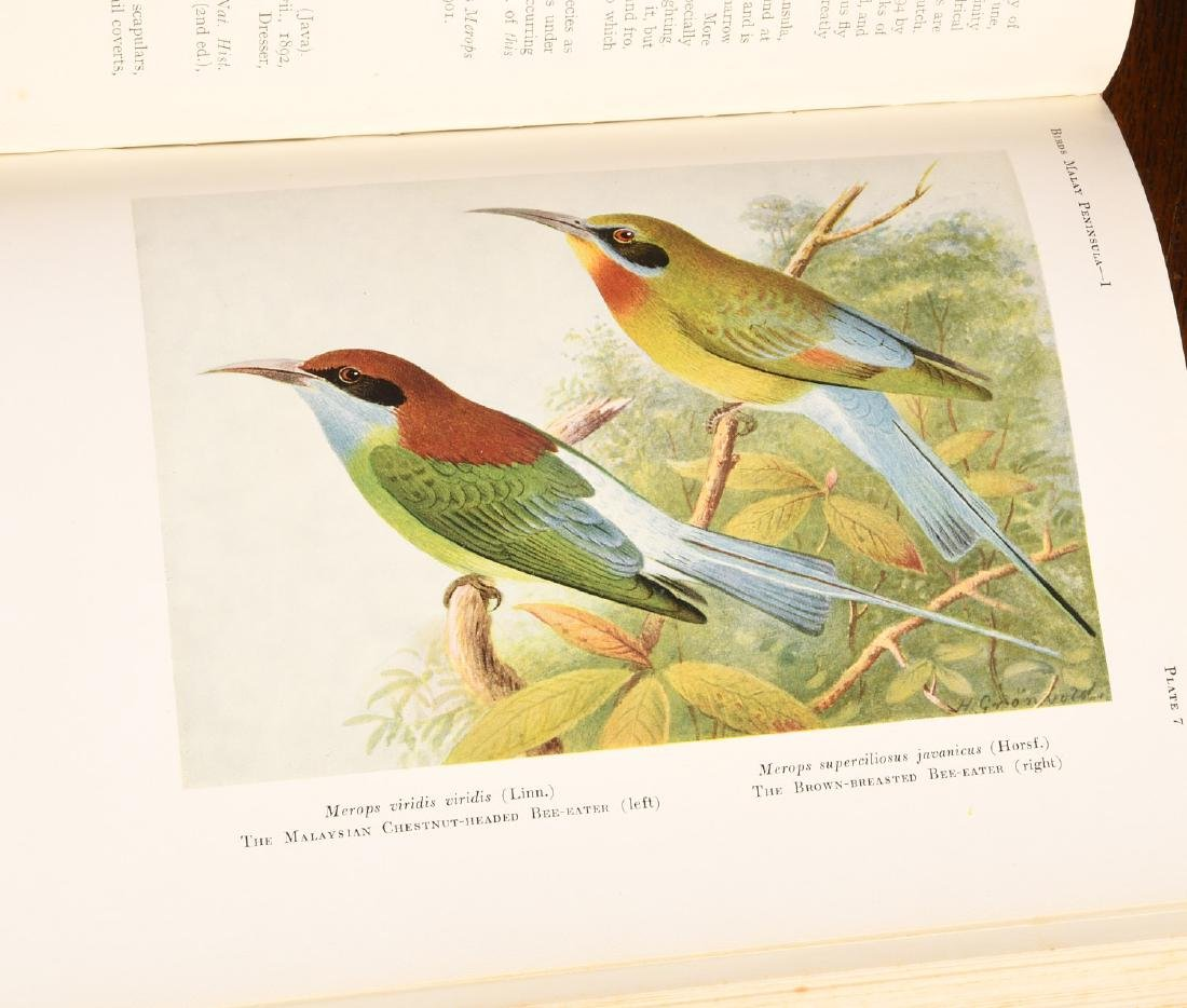 BOOKS: (5) Vols 1927 Birds of Malay Peninsula - 5