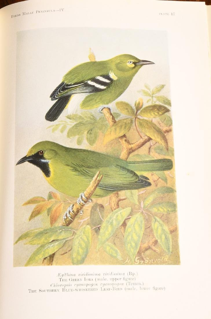 BOOKS: (5) Vols 1927 Birds of Malay Peninsula - 8