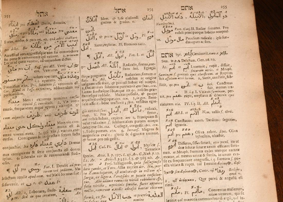 BOOKS: (2) Vols Lexicon Heptaglotton 1669 Roycroft - 8
