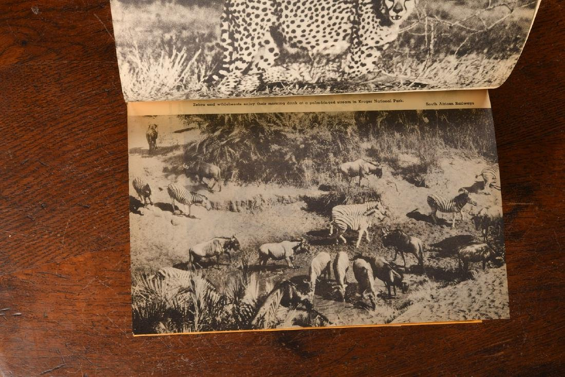 BOOKS: Akeley 1936 Restless Jungle SIGNED - 5