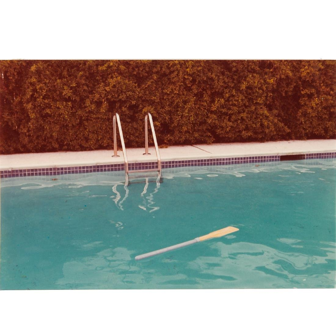 David Hockney, photograph