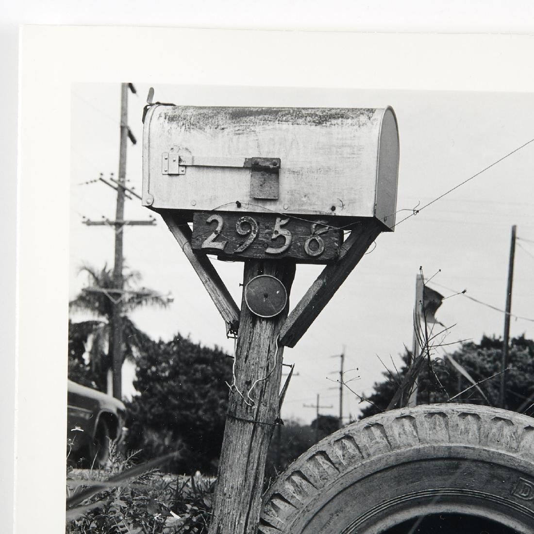Robert Rauschenberg, photograph - 2