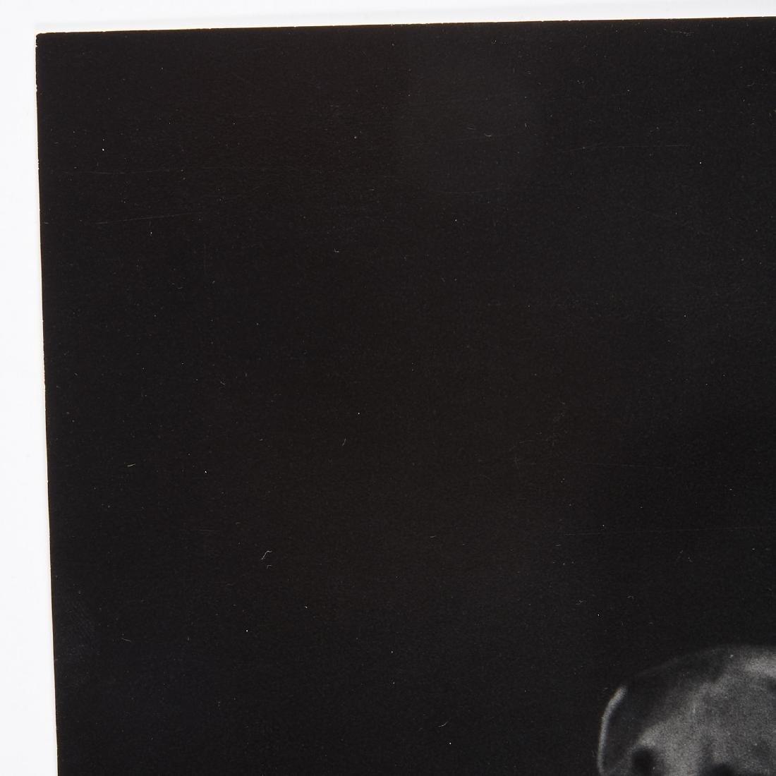 William Wegman, photograph - 6