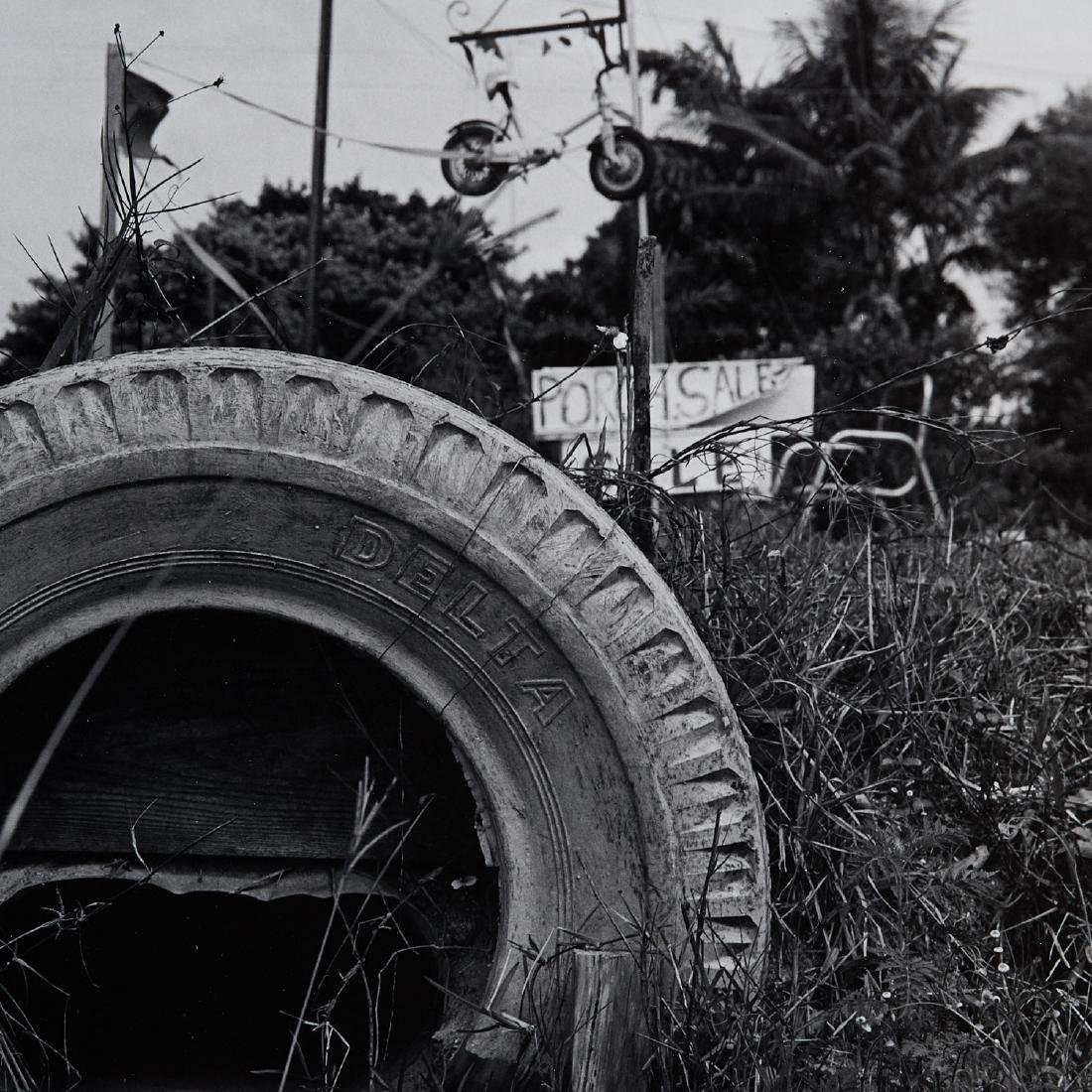 Robert Rauschenberg, Mailbox and Tire, 1979 - 4