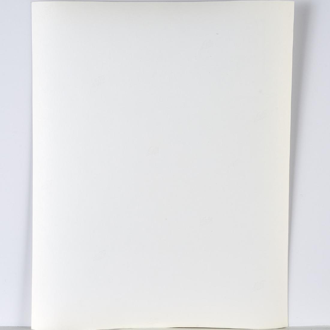 Robert Rauschenberg, Mailbox and Tire, 1979 - 6