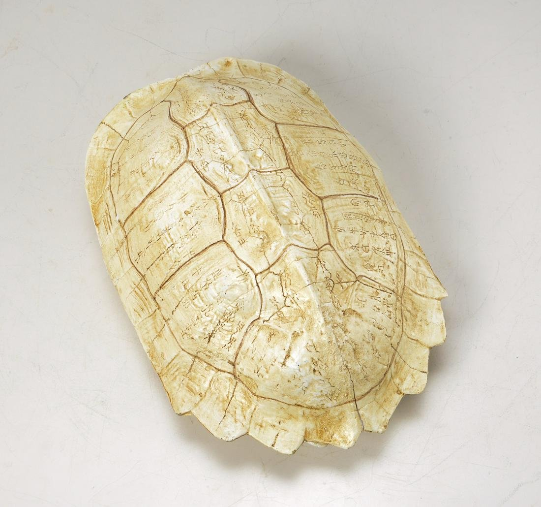 Chinese inscribed turtle shell oracle bone