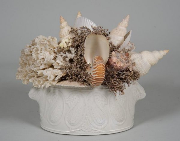 1244: Decorator seashell and coral arrangement
