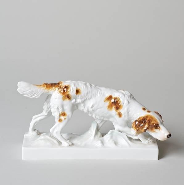 1007: Meissen porcelain model of an Irish Setter