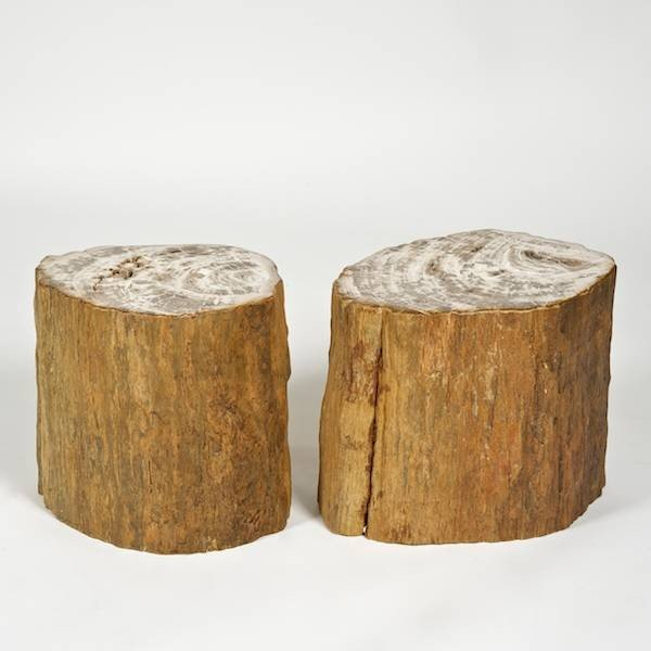Pair petrified wood log section tables or table b